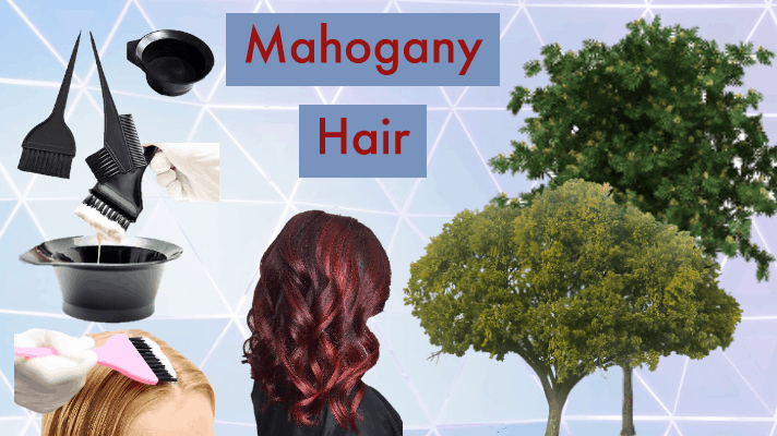 Mahogany hair color | Mahogany brown hair | Mahogany hair dye