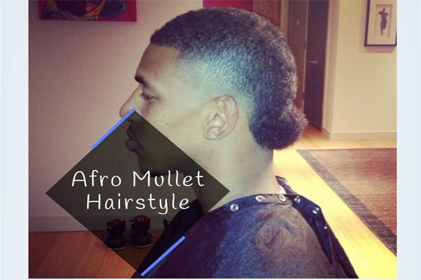 Afro Mullet Hairstyle