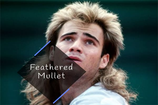 Feathered Mullet