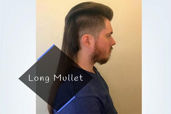 Long Mullet