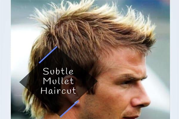 Subtle Mullet Haircut