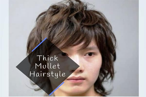 Thick Mullet Hairstyle