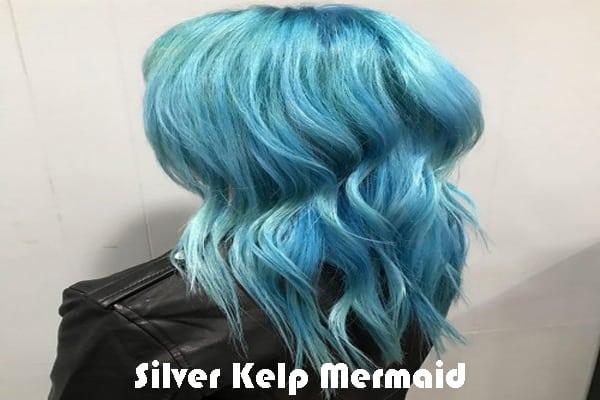 Silver Kelp
