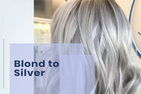 Blond to Silver