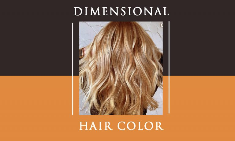 Dimensional Hair Coloring Ideas | Dimensional Color Vs Balayage