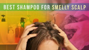 Best Shampoo for Smelly Scalp